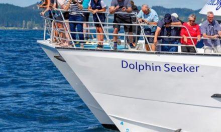 Nueva Zelanda: Comisión de Investigación de Accidentes de Transporte publicó informe sobre el encallamiento del Dolphin Seeker