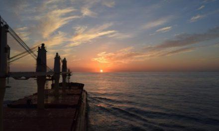 Diana Shipping encuentra trabajo para la unidad Post-Panamax