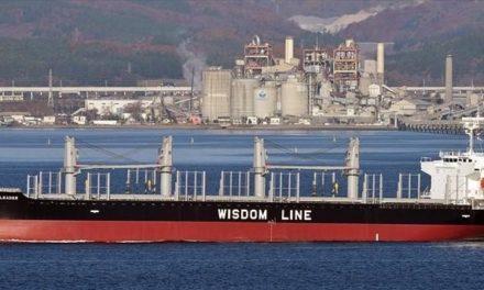 Wisdom Marine ordenará dos graneleros en China