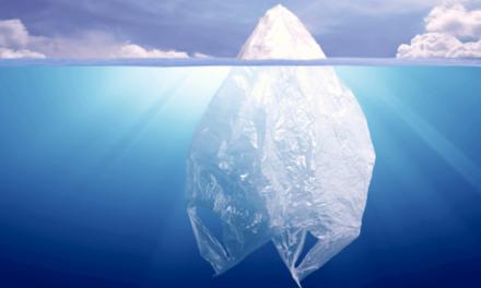 Proyecto mundial contra la basura plástica en el mar