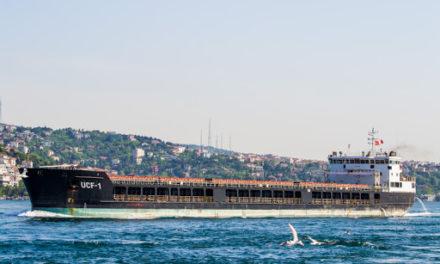 Un buque cargado con cebada destinado a Irán encalla en el mar Caspio