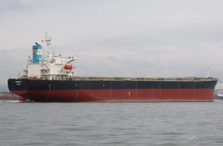 INTERCARGO: Los buques de carga seca a granel siguen siendo los caballos de batalla del transporte marítimo internacional y el comercio mundial