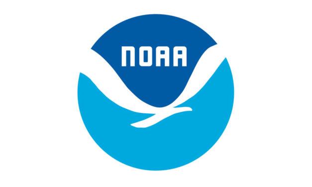 La NOAA cancela cinco estudios de pesca a gran escala debido al COVID-19