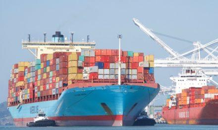 Las líneas de contenedores tuvieron sólo seis «viajes en blanco» en la última semana