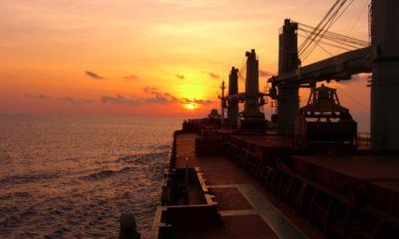 Binh Minh International Sunrise Shipping hizo un movimiento de activos poco común…