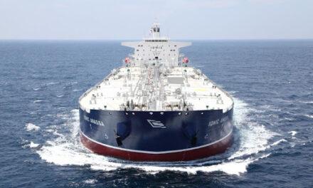 Castor Maritime espera 18 millones de dólares de la venta de acciones