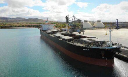Castor Maritime apunta hacia su quinto buque granelero panamax