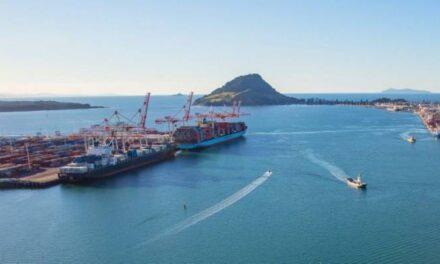 El puerto de Tauranga se reabre después de que un buque carguero de troncos perdiera la energía en la entrada del puerto