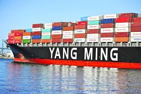 Yang Ming firma para tres nuevos buques japoneses de 11.500 TEU