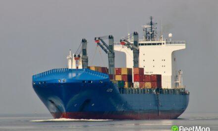 2 polizones saltaron de un buque portacontenedores y se ahogaron en el puerto de Valencia