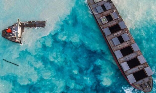El capitán del buque Wakashio que encallo en las costas de Mauricio fue arrestado
