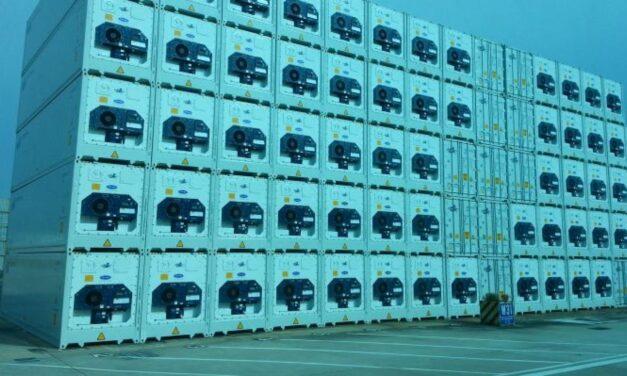 El comercio de buques frigoríficos tendrá un crecimiento anual del 3,7% hasta el 2024