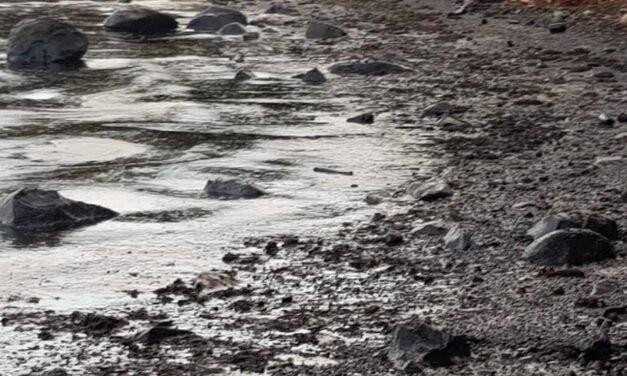 Más de 1.000 toneladas de combustible derramadas del buque granelero Wakashio en las costas de Mauricio
