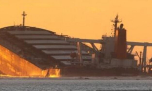 """Una marea negra, herencia del buque """"Wakashio"""" en Mauritius"""