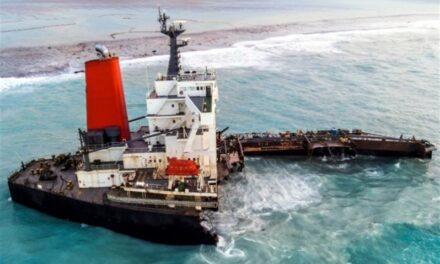 Líneas navieras: La feliz sincronía entre las tarifas de flete y las tarifas spot