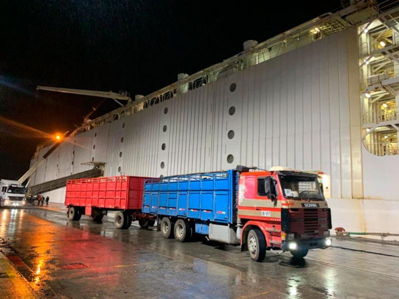 Servicio Nacional de Aduanas de Chile fiscaliza la exportación de ganado vivo más grande de la historia