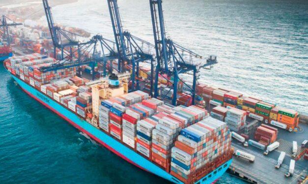 STI realiza primer embarque de cerezas rumbo a China