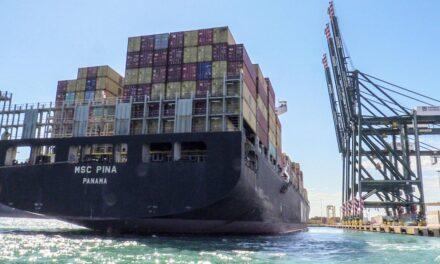Incremento de las exportaciones e importaciones elevan en 20,5% los movimientos de Valenciaport en noviembre