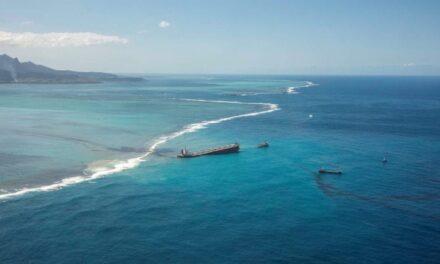 El capitán del Wakashio confirma que navegó cerca de la costa para captar la señal del móvil, pero culpa al primer oficial de la varada