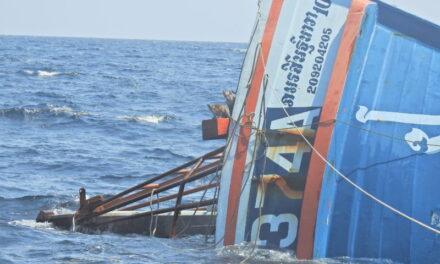 La Marina tailandesa se esfuerza por salvar a los gatos de un barco en hundimiento-Fotos