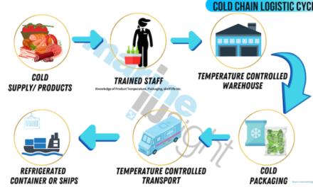 Guía de logística para la cadena de temperatura controlada – cosas que debes saber
