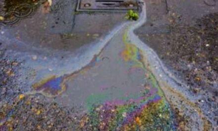 ¿Y si el próximo derrame de petróleo pudiera ser una cena para los microorganismos?