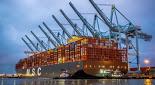 El mercado de fletamento de contenedores se ha vuelto » loco «