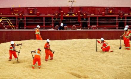 La sequía supone un problema subestimado para las exportaciones a granel de Sudamérica