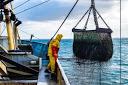 Los datos del sector marítimo se comparten por primera vez con otras industrias a través de IoS-OP