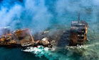 Animales marinos muertos llegan a la costa de Sri Lanka tras el hundimiento de un buque de carga