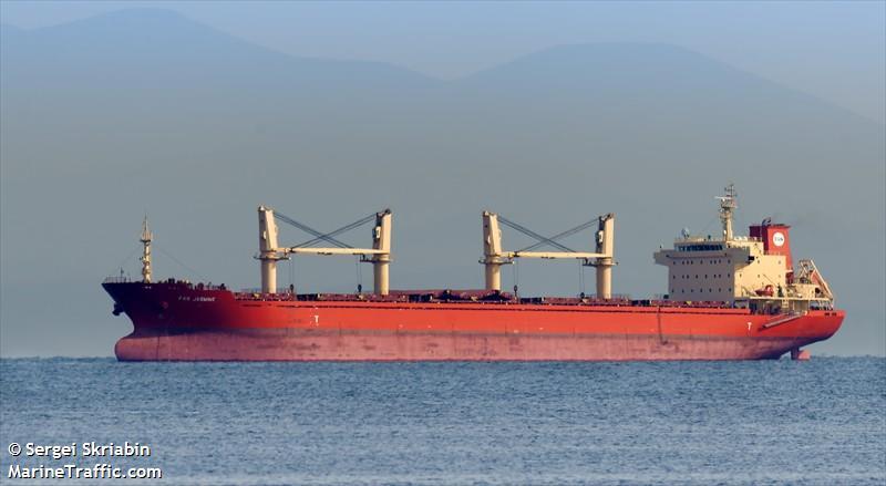 Un buque de carga es expulsado de las aguas de EE.UU. tras el descubrimiento de insectos invasivos