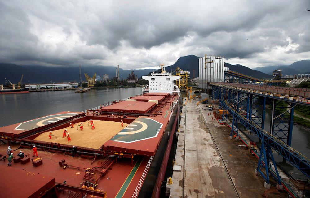 El regulador portuario de Brasil apunta a Bunge
